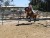 Kristin is still jumping horses. Don't let anything stop you either!